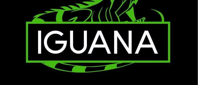 Обзор кальянного табака iguana